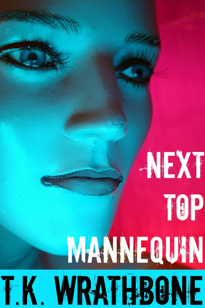 Book Cover: Next Top Mannequin