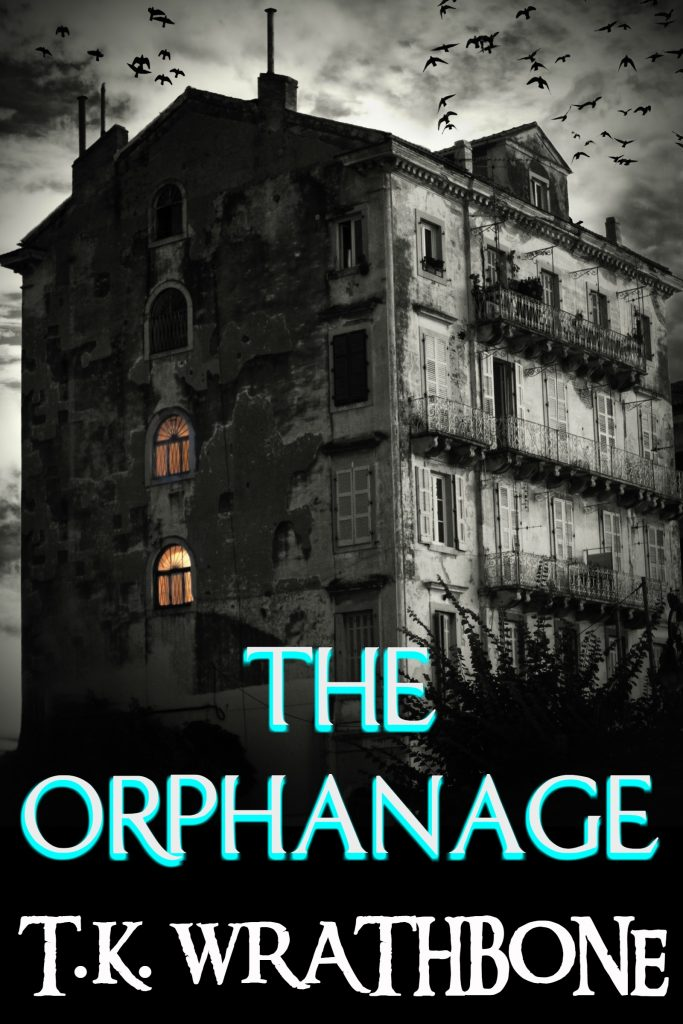 Book Cover: The Orphanage
